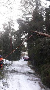 Aapeli-myrskyn vaurioiden korjaus